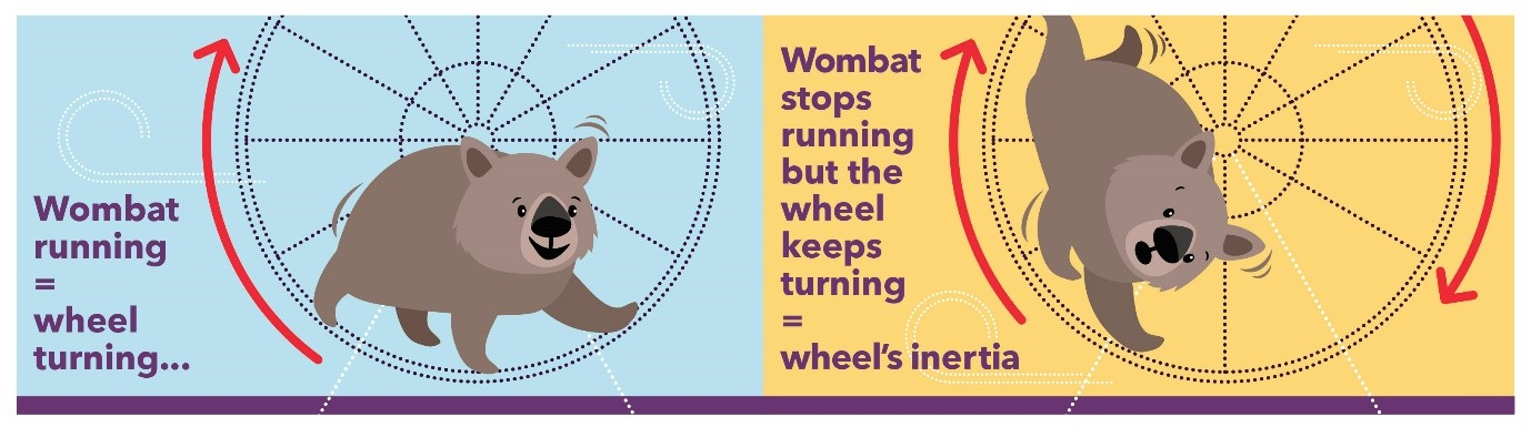 Graphic demonstrating system inertia with a wombat